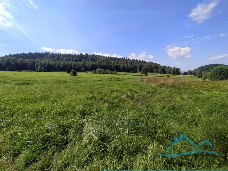 Jelenia Góra, dolnośląskie, Polska, ,Działki,Na sprzedaż,3845